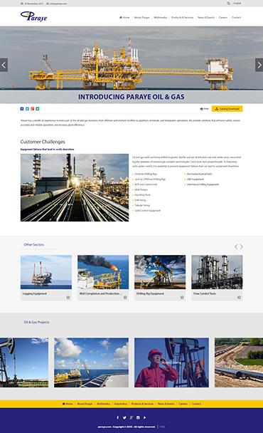 شرکت پارایه - جزئیات محصول