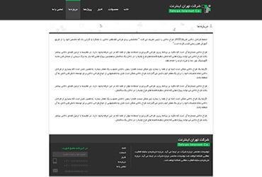 شرکت تهران اینترنت - درباره ما