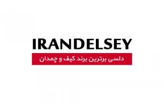 طراحی و برنامه نویسی وب سایت نمایندگی کیف و چمدان دلسی به شرکت حامد پردازش واگذار شد.